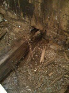Joist Replacement 2